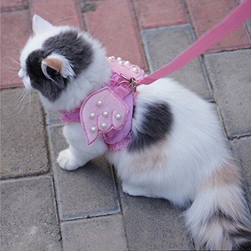 Wings Costume Cat Harness Leash Set (Small, Pink)