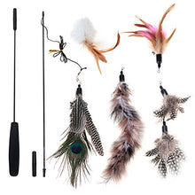 5 Pieces Cat Feather Toy with Bell