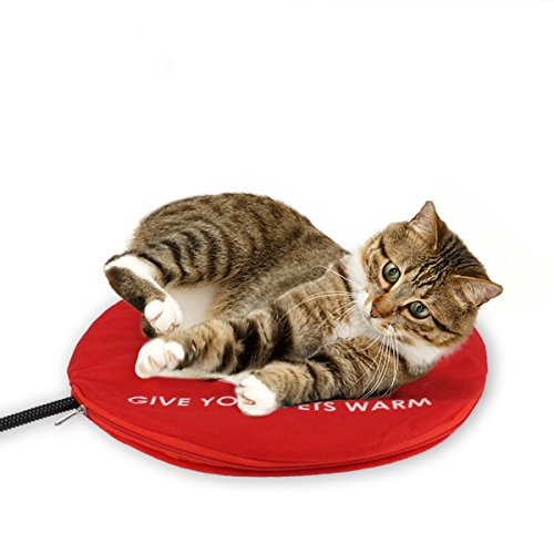 Safety Indoor Cat Dog Pet Bed