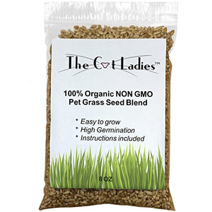 Cat Grass Seed 100% Organic, 8 oz