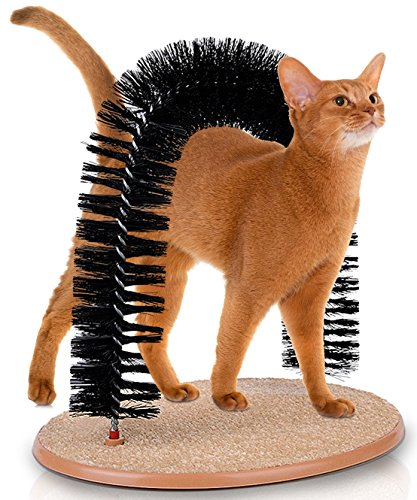 Self Cat Scratcher And Groomer Massager With Catnip