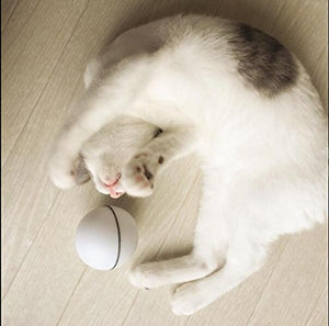 Automatic Rolling Cat Ball