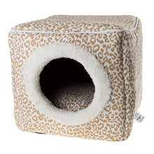 Cat Igloo Box House