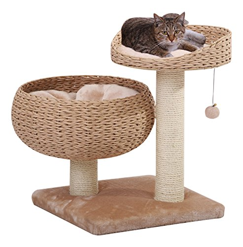 Bowl Shaped Cat Tree