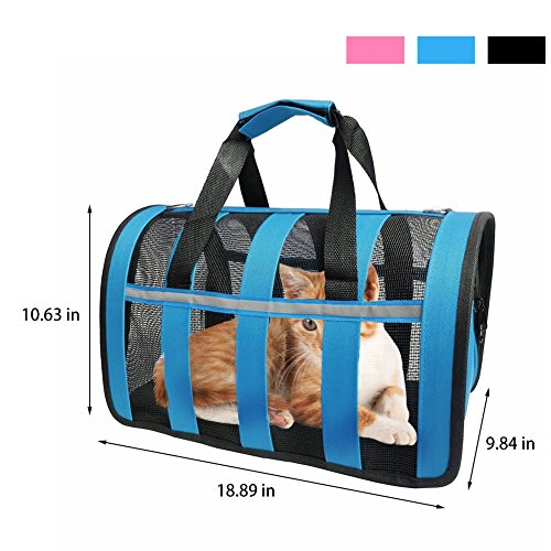 Transparent Airline Approved Cat Bag