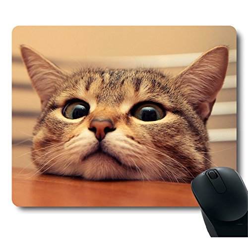 Adorable Kitty on Table Ready to Play Mouse Pad
