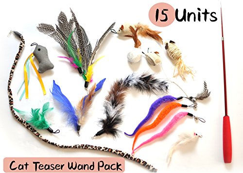 15 Unit Cat Teaser Toys Set