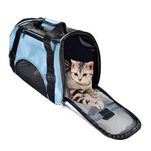 Pet Carrier with Mesh Panels and Bed