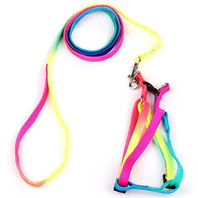 Cat Adjustable Nylon Leash Rainbow Colors Chest Straps, Rop length: 47