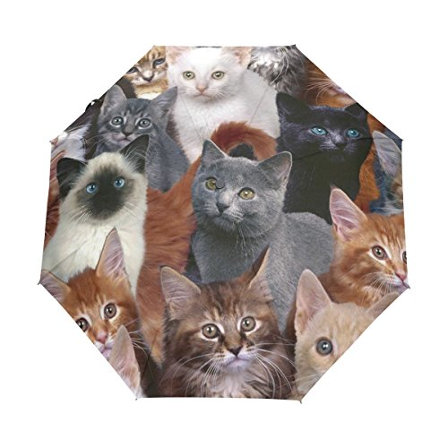 Cats Looking at Sky Print Windproof UV Polyester Taffeta Umbrella
