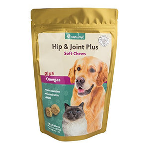 Hip & Joint Plus Soft Chews for Dogs and Cats, 120 Soft Chews