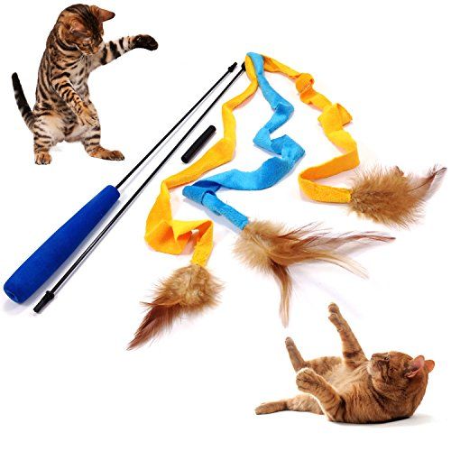Teaser Interactive Cat Toy