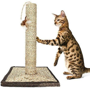 Scratching Post with Feather for Cats