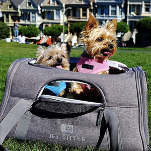 Jet Sitter Soft Sided Pet Carrier Bag