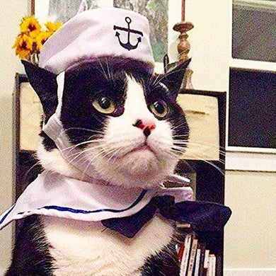 Cat Dog Sailor Costume - Cat Costume Navy Hat Cats Dogs Halloween Costume for Halloween, Christmas,Party