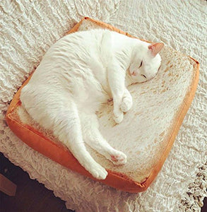 Toast Slices Shape Bed for Cats