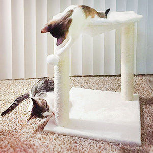 Bowl Shaped Hammock Cat House