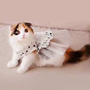 i'Pet Cat Bridal Wedding Dress, (White, Medium)