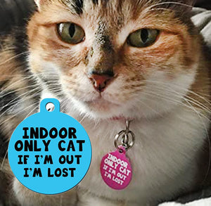 "Cat ID Tag - ""Indoor Only Cat If I'm Out I'm Lost"", 4 lines of text"