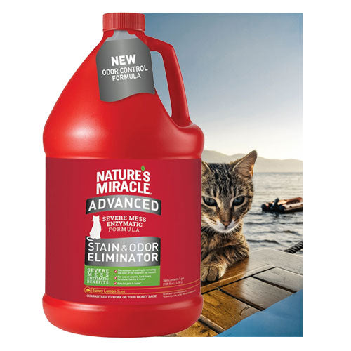 Sunny Lemon Advance Cat Stain and Odor Eliminator Gallon