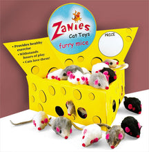 Zanies Cheese Wedge Display Box with 60 furry mice
