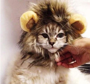 Cute Lion Hair Halloween Pet Costume