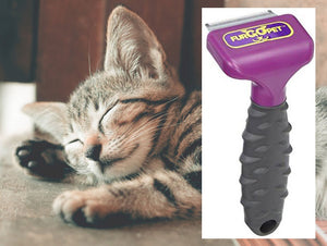 Deshedding Tool for Cats by FurGoPet, Decreases Shedding