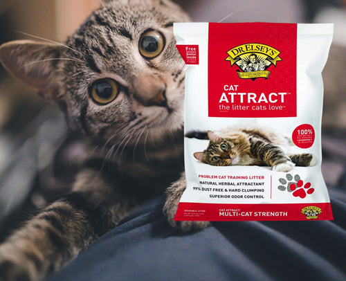 Dr. Elsey's Cat Attract Training Litter, 99.5% Dust Free  Edit alt text