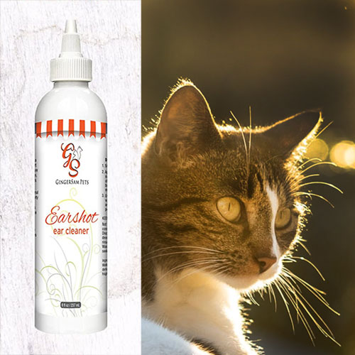 Earshot Ear Cleaner for Dogs & Cats, Antiseptic