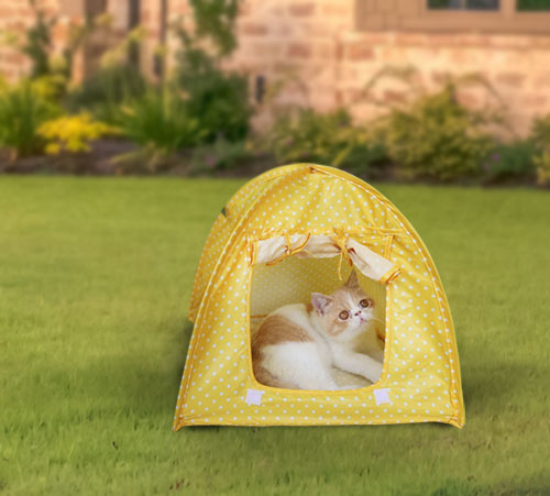 Foldable Outdoor Cat Tent