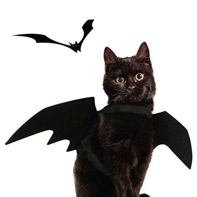 Halloween Cat Bat Costume with Funny Wings (S, Black)