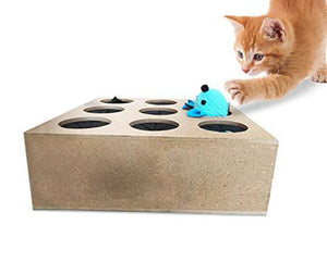 Interactive Indoor Cat Puzzle Box