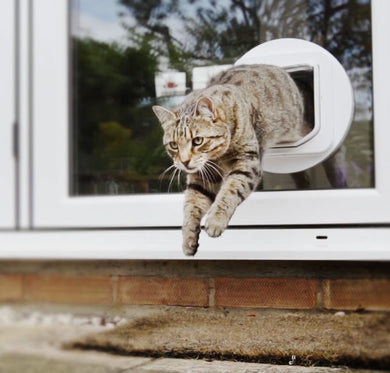 Microchip Cat Door with Double Antenna