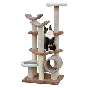Multi-Level Carpet Cat Play House