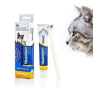 Bluestem Oral Care Toothpaste and Toothbrush for Pets, Chicken Flavor