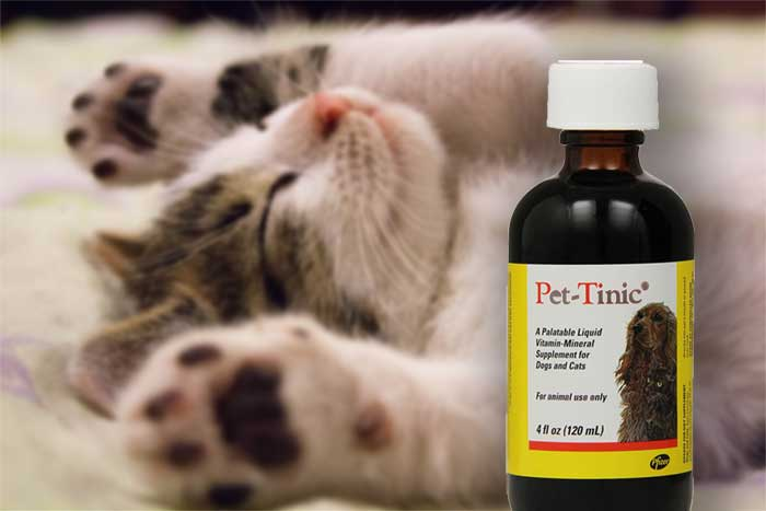 Pet-Tinic Vitamin-Mineral Supplement for Pets  Edit alt text