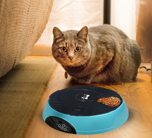 Qpets 6-Meal Automatic Pet Feeder  Edit alt text