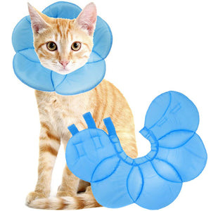 Recovery Cone E-Collar for Cats, Sky Blue