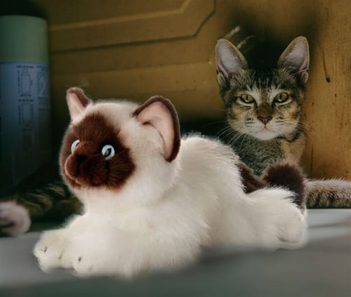 Soft and Cuddly Realistic Cat Plush