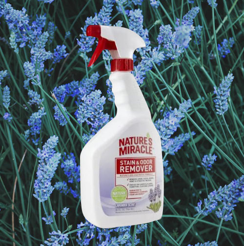 Nature's Miracle Stain & Odor Remover, Lavender Scent