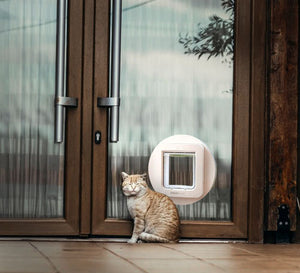 SureFlap Microchip Pet Door (White)  Edit alt text