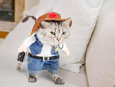 West Cowboy Cat Costume and Hat for Halloween