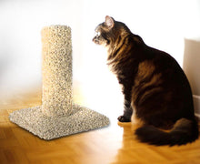 Deluxe Carpet Scratching Post