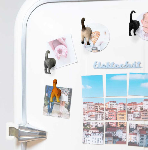 6 Different Cat Butt Magnets with Functional Design by OSABO