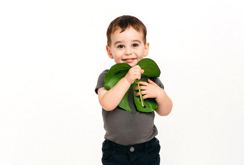 boy holding monstera leaf