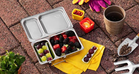 non-toxic stainless steel lunch box with three sub compartments