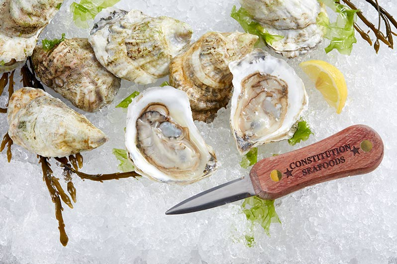 Live Bluepoint Oysters