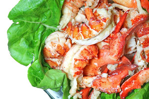 Fresh Lobster Meat | Constitution Seafoods - Boston, MA