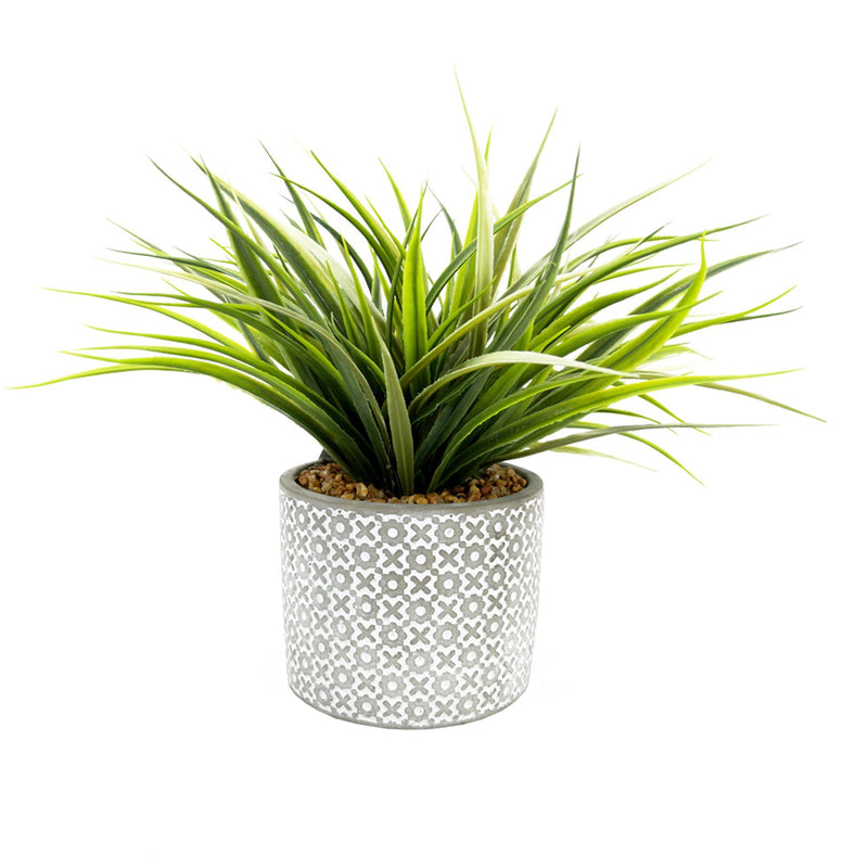 Artificial Grass Plant with Cement Pot | X Design - Magasins Hart | Hart Stores