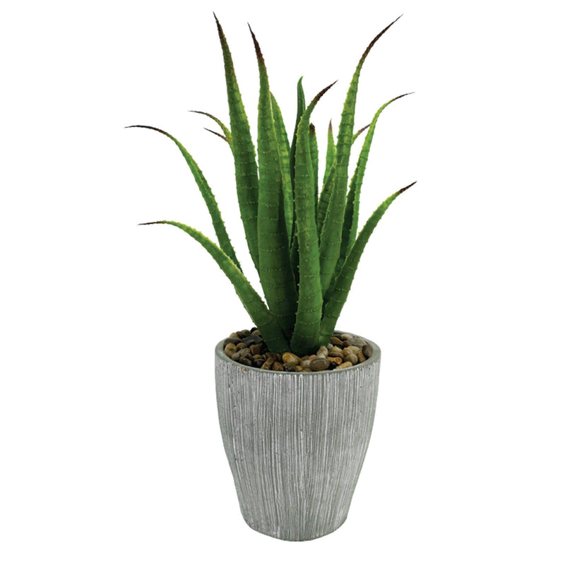 "Artificial Potted Succulents - 14"" - Magasins Hart 